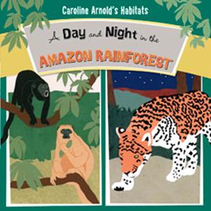 Raintree Non-fiction Accelerated Reader Hardback Books-Half Price   4.0 - 4.9   41 Titles