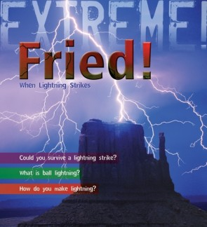 Extreme Science: Fried!